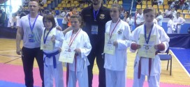 "INTERNACIONALNI KARATE TURNIR ""NOVOGRADSKI DANI 2015"""