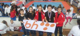 Međunarodni turnir DBG 2014